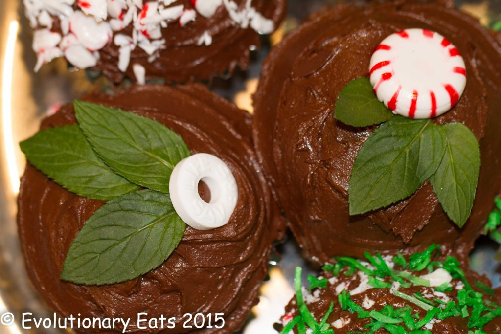 This image has an empty alt attribute; its file name is Mint-cupcakes3-1024x683.jpg